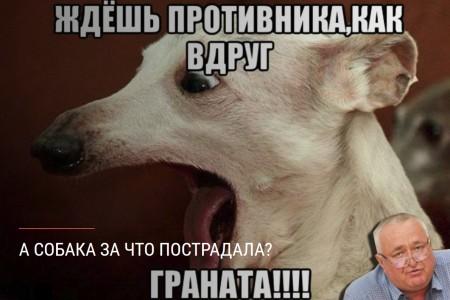 А собака то за что пострадала?